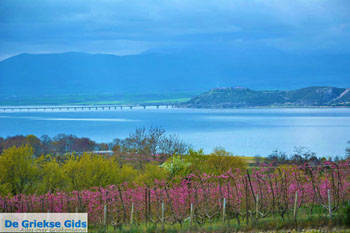Polifitos-meer Kozani | Macedonie Griekenland 11 - Foto van De Griekse Gids