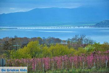 Polifitos-meer Kozani | Macedonie Griekenland 12 - Foto van De Griekse Gids