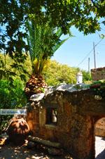 Zakros en Kato Zakros - Kreta - De Griekse Gids 12 - Foto van De Griekse Gids