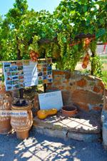GriechenlandWeb.de Zakros und Kato Zakros - Kreta - GriechenlandWeb.de 64 - Foto GriechenlandWeb.de