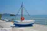 Agios Sostis Zakynthos - Ionische eilanden -  Foto 23 - Foto van De Griekse Gids
