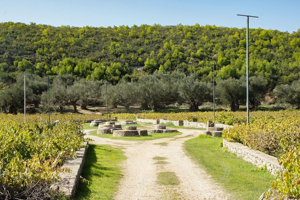 foto 12 Venetiaanse bronnen Agalas Zakynthos - Foto Dionysios Margaris 10