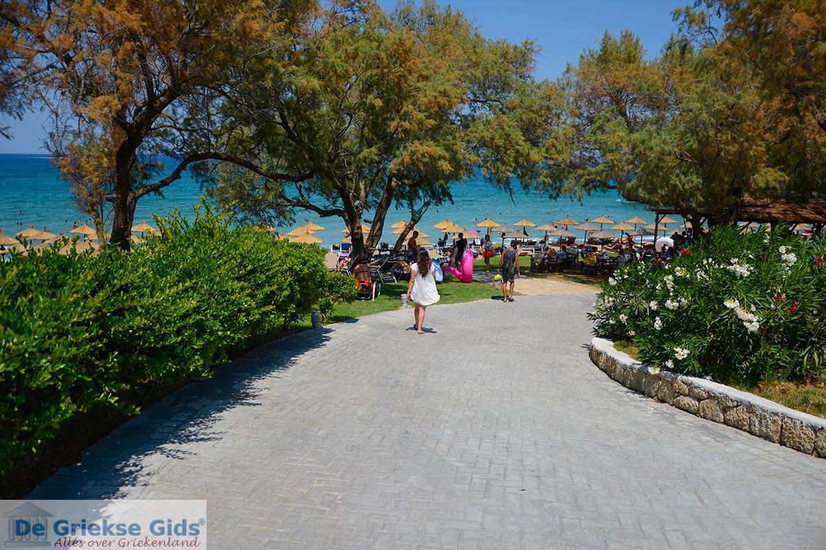 foto Porto Zorro - Porto Azuro Zakynthos - Ionische eilanden -  Foto 10