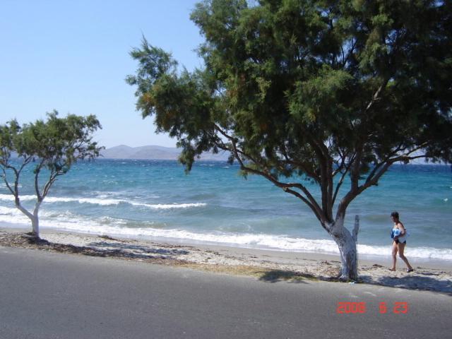 foto Tigaki-zee