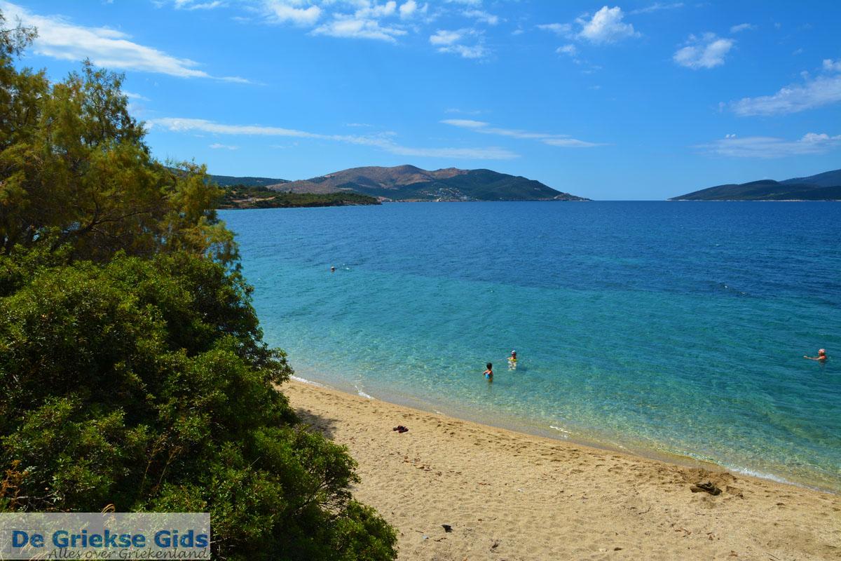 foto Strand Kokkini | Marmari Evia | Griekenland foto 20