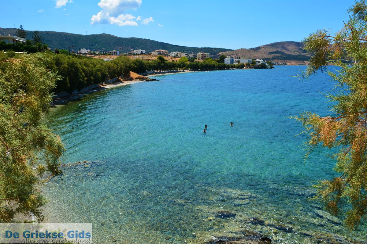 foto Strand Kavos   Marmari Evia   Griekenland foto 5