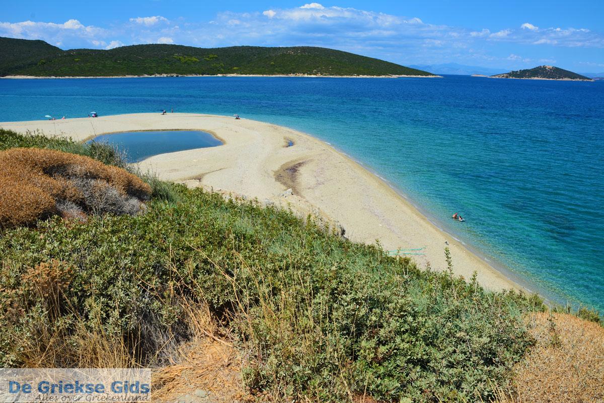 foto Bij Golden beach Evia | Marmari Evia | Griekenland foto 20