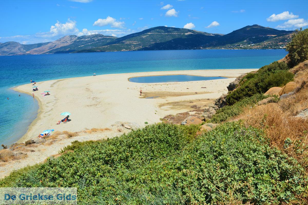 foto Bij Golden beach Evia | Marmari Evia | Griekenland foto 51