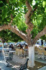 Karystos Evia | Griekenland | Foto 11 - Foto van De Griekse Gids