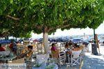 GriechenlandWeb.de Karystos Evia | Griechenland | Foto 15 - Foto GriechenlandWeb.de