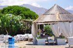 Karystos Evia | Griekenland | Foto 27 - Foto van De Griekse Gids