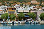 Marmari Evia | Griekenland | Foto 38 - Foto van De Griekse Gids