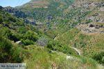 GriechenlandWeb.de Aghios Dimitrios Evia | Griechenland | foto 3 - Foto GriechenlandWeb.de