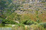 Aghios Dimitrios Evia | Griekenland | foto 4