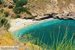 Aghios Dimitrios Evia | Griekenland | foto 15