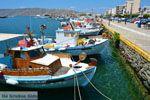 Karystos Evia | Griekenland | Foto 49 - Foto van De Griekse Gids