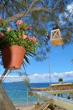 Strand Kokkini | Marmari Evia | Griekenland foto 38 - Foto van De Griekse Gids