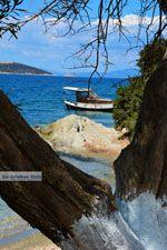 Strand Kavos | Marmari Evia | Griekenland foto 7 - Foto van De Griekse Gids