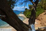 Strand Kavos | Marmari Evia | Griekenland foto 9