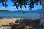 Strand Marmari Evia | Griekenland | Foto 1 - Foto van De Griekse Gids