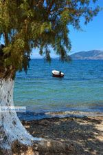 Strand Marmari Evia | Griekenland | Foto 5 - Foto van De Griekse Gids