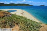 Bij Golden beach Evia | Marmari Evia | Griekenland foto 20