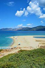 Bij Golden beach Evia | Marmari Evia | Griekenland foto 43 - Foto van De Griekse Gids