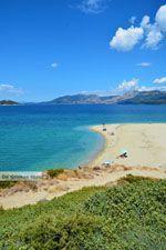 Bij Golden beach Evia | Marmari Evia | Griekenland foto 44 - Foto van De Griekse Gids