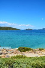 Bij Golden beach Evia | Marmari Evia | Griekenland foto 45 - Foto van De Griekse Gids