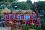 Paradisi Evia | Griekenland | Foto 4 - Foto van De Griekse Gids