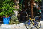 Marmari Evia | Griekenland | Foto 74 - Foto van De Griekse Gids