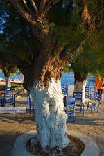 Marmari Evia | Griekenland | Foto 100 - Foto van De Griekse Gids