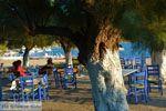 Marmari Evia | Griekenland | Foto 101 - Foto van De Griekse Gids