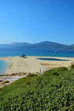 Bij Golden beach Evia | Marmari Evia | Griekenland foto 90