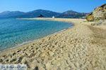 Bij Golden beach Evia | Marmari Evia | Griekenland foto 122 - Foto van De Griekse Gids
