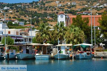 Marmari Evia | Griechenland | Foto 39 - Foto von GriechenlandWeb.de