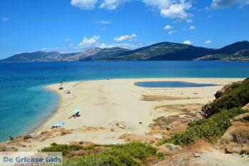 Bij Golden beach Evia | Marmari Evia | Griekenland foto 37